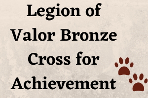Baptist Hill senior earns Legion of Valor  Bronze Cross