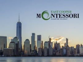 Montessori Model United Nations NYC 2020 - Check out this teaser video!