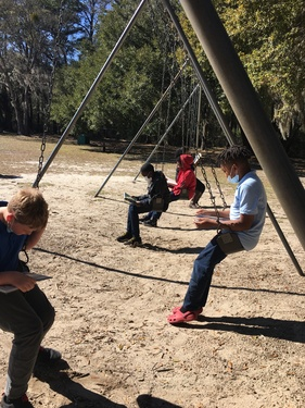 Students reading on swings