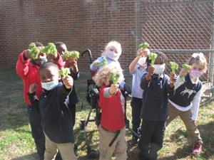 CD students holding up broccoli plants