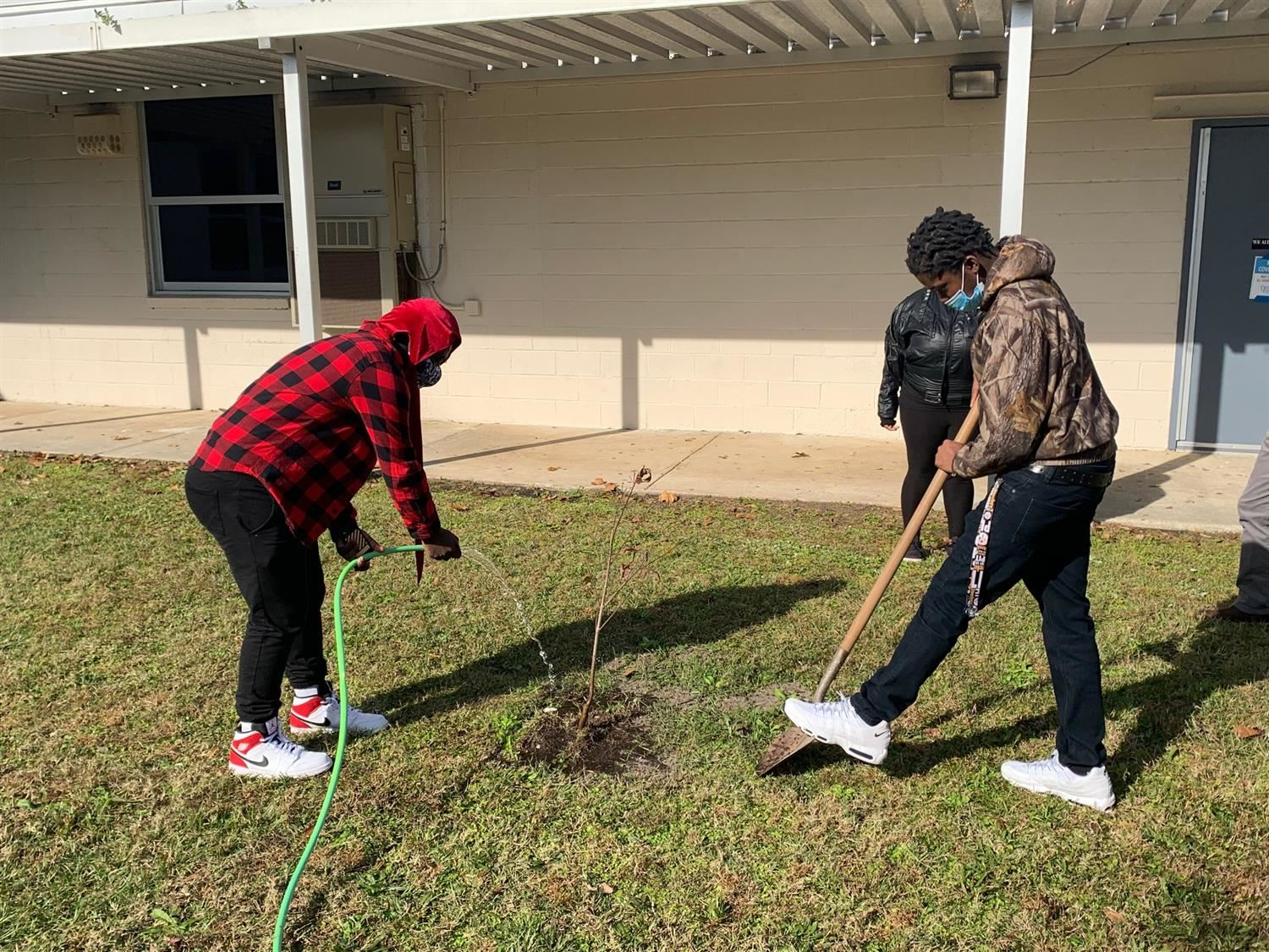 Students plant trees on campus